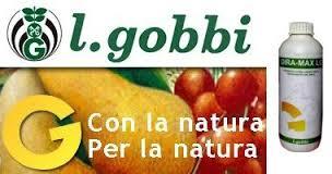 lgobbi logo