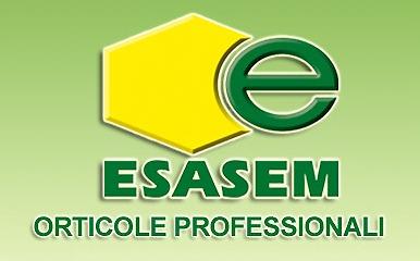 Katalog sjemena povrća Esasem